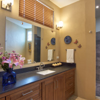 Master bath and large shower